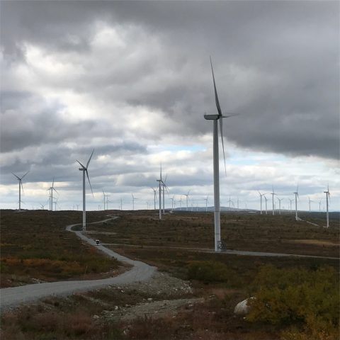 Blaiken 250 MW Turbine Procurement